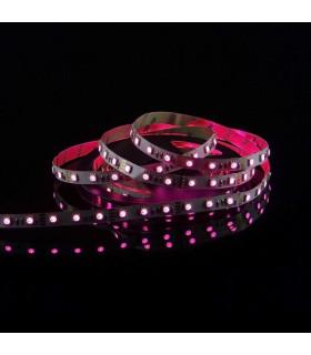 MAX-LED-strip-5050-SMD-300-LED-RGB-IP20-red