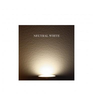 MAX-LED oval bulkhead wall light 14W motion sensor neutral white - 4500K
