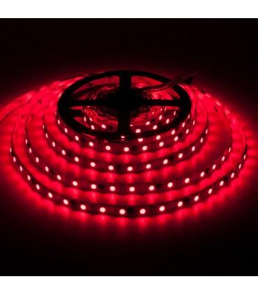 Prestige DIGITAL WS2811 magic LED strip light 300 SMD IP20 - red