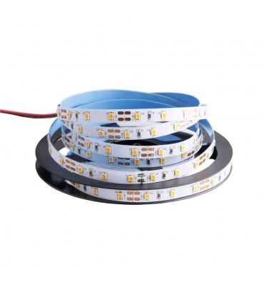 MAX-LED premium strip 2835 SMD 300 LED 4.8W IP20