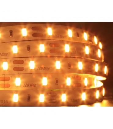 LED line® strip 5630 SMD 300 LED Samsung 24V IP20 -