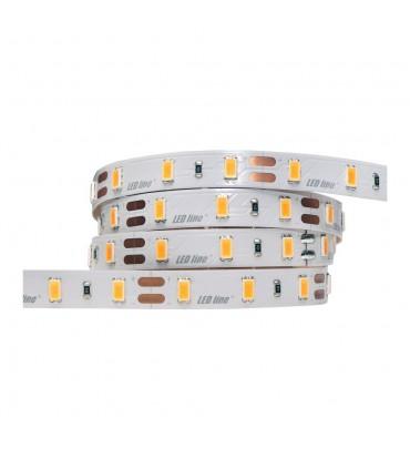 LED line® strip 5630 SMD 300 LED Samsung 24V IP20