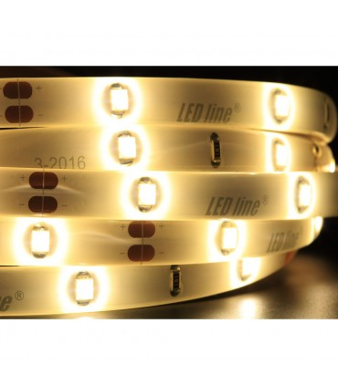 LED line® single colour LED strip 3528 SMD 150 LED 12V IP65 -