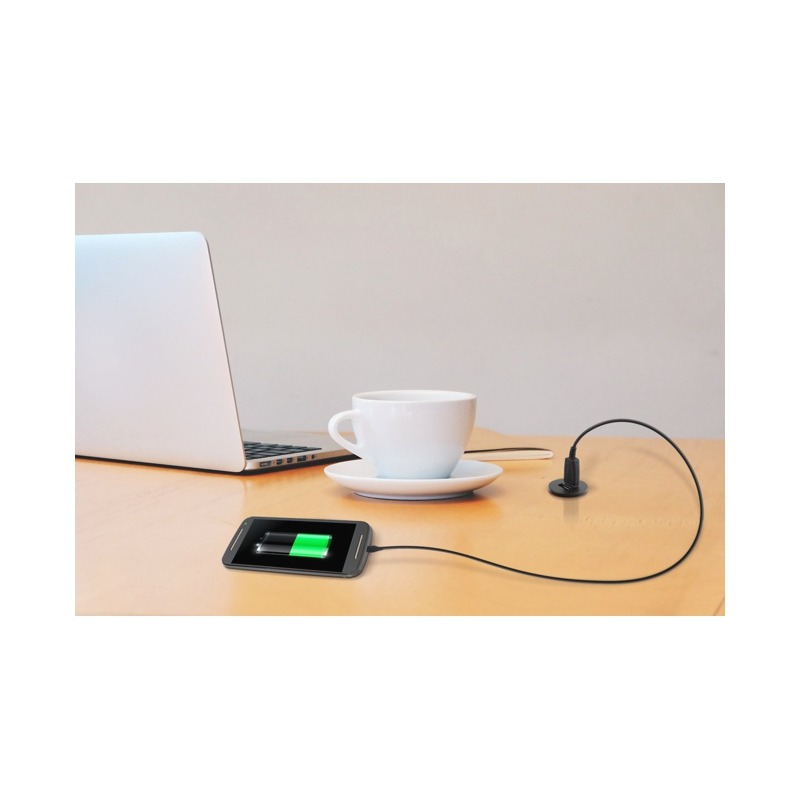 Wide application for double USB socket for example in the office